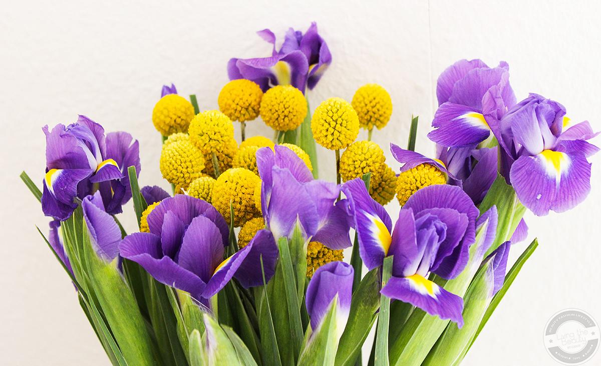 bloomy-days-5 Eine blumige Überraschung mit Bloomy Days. | Werbung