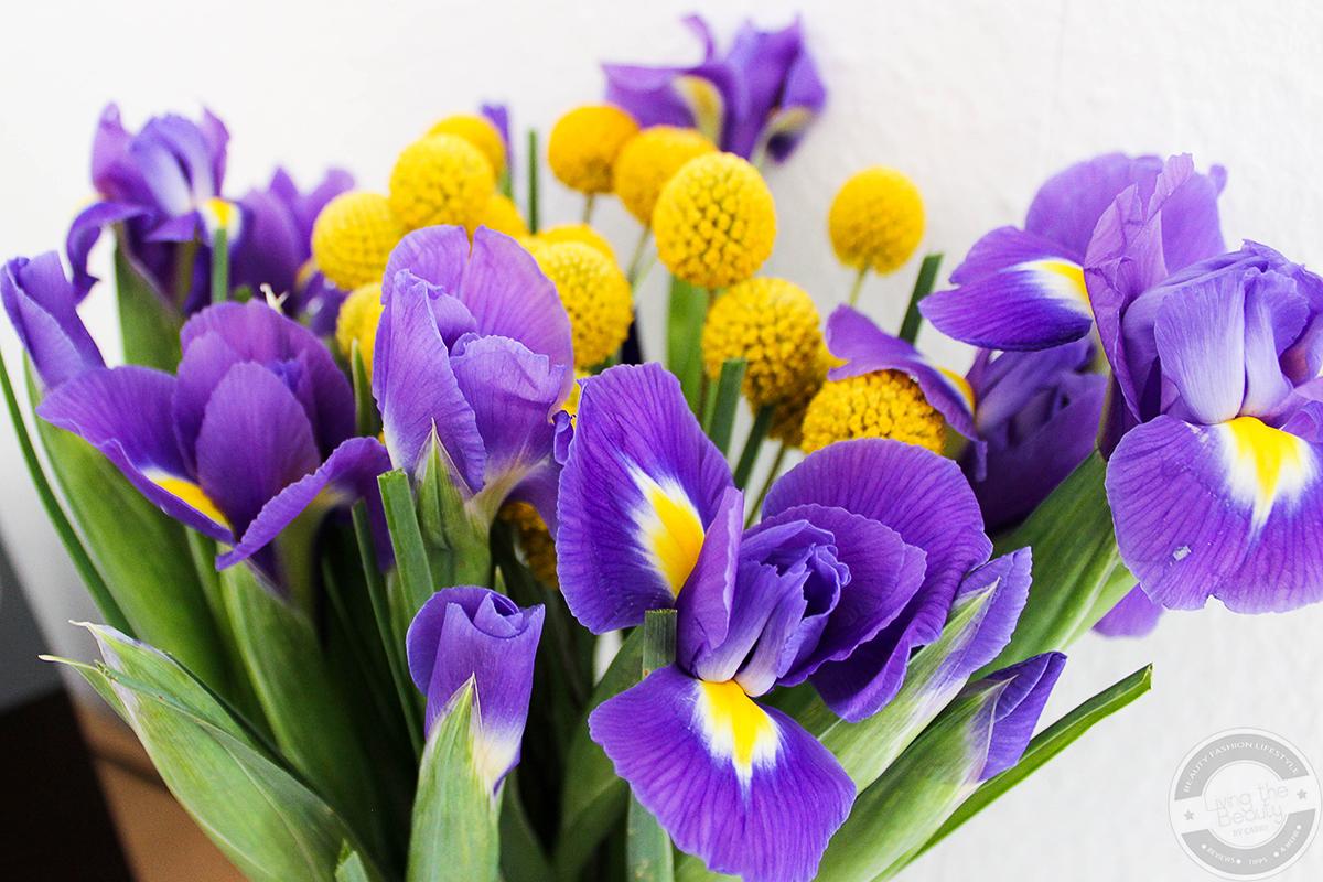 bloomy-days-8 Eine blumige Überraschung mit Bloomy Days. | Werbung