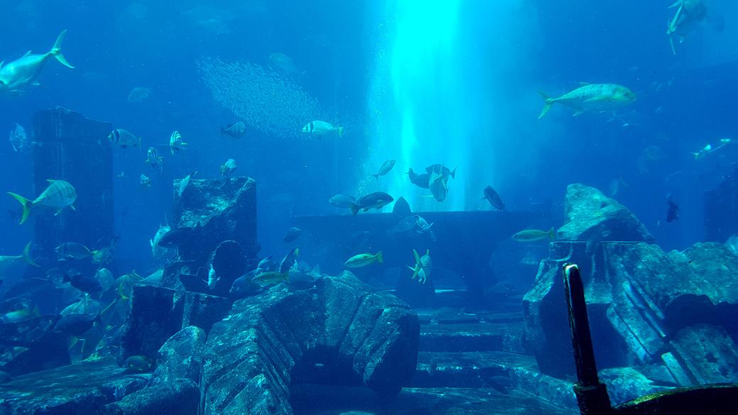 dubai-marina-hafen-2 5 Sehenswürdigkeiten die ihr euch in Dubai nicht entgehen lassen solltet  dubai-marina-hafen-1 5 Sehenswürdigkeiten die ihr euch in Dubai nicht entgehen lassen solltet  burj-khalifa-at-the-top-mall-dubai 5 Sehenswürdigkeiten die ihr euch in Dubai nicht entgehen lassen solltet  burj-khalifa-at-the-top 5 Sehenswürdigkeiten die ihr euch in Dubai nicht entgehen lassen solltet  dubai-mall-fountain 5 Sehenswürdigkeiten die ihr euch in Dubai nicht entgehen lassen solltet  mall-of-dubai-ice 5 Sehenswürdigkeiten die ihr euch in Dubai nicht entgehen lassen solltet  burj-al-arab-dubai-2 5 Sehenswürdigkeiten die ihr euch in Dubai nicht entgehen lassen solltet  mall-of-the-emirates-dubai-1 5 Sehenswürdigkeiten die ihr euch in Dubai nicht entgehen lassen solltet  mall-of-the-emirates-dubai-2 5 Sehenswürdigkeiten die ihr euch in Dubai nicht entgehen lassen solltet  the-snow-dubai 5 Sehenswürdigkeiten die ihr euch in Dubai nicht entgehen lassen solltet  the-snow-dubai-pinguin 5 Sehenswürdigkeiten die ihr euch in Dubai nicht entgehen lassen solltet  lost-chambers-dubai-2 5 Sehenswürdigkeiten die ihr euch in Dubai nicht entgehen lassen solltet  lost-chambers-dubai-1 5 Sehenswürdigkeiten die ihr euch in Dubai nicht entgehen lassen solltet